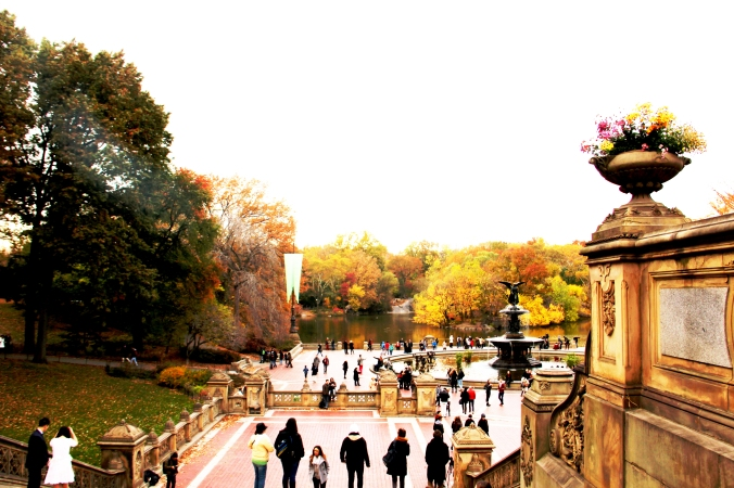 Central Park andregriffiths.com